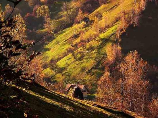 Holliday Romania