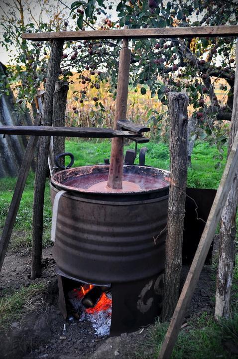Prepararea silvoitului: Se spala bine prunele, se scot samburii (se diojdioaca- pentru ardeleni), se pune in caldarea de cupru curata si se fierbe; iar in timp ce fierbe se amesteca...... si se fierbe, se tot fierbe.... aproximativ 10-12 ore.