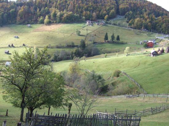 Dragoslavele , photo by S M P