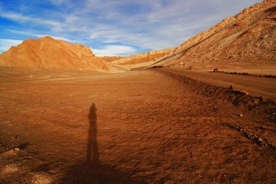 desert-chile-shadow