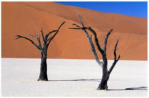 namib-desert, by Frantisek Staud.