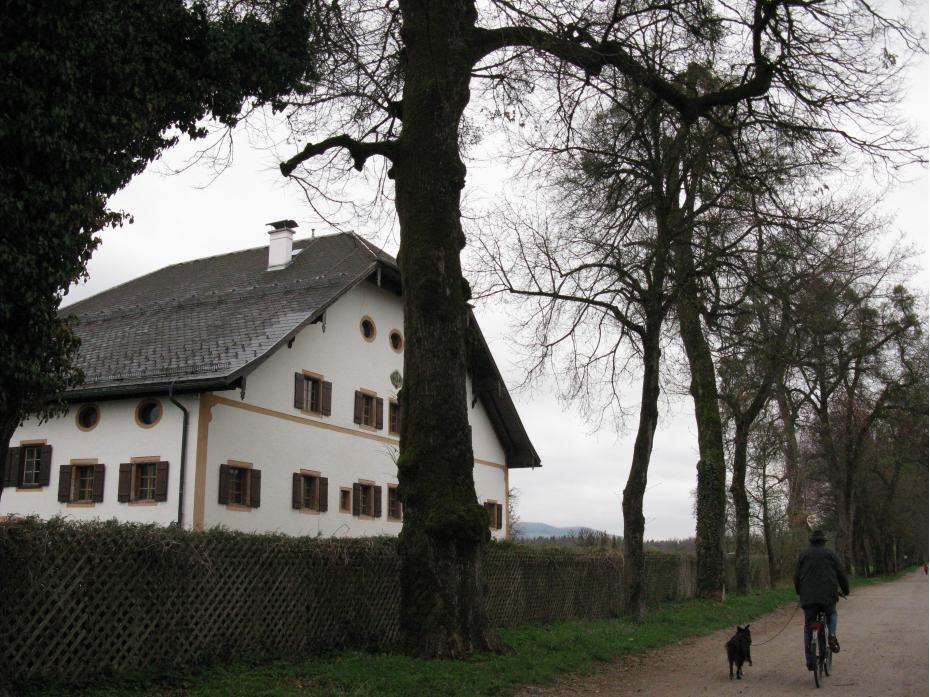 spre castel