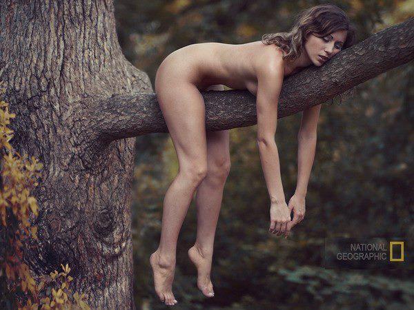 Tree-woman