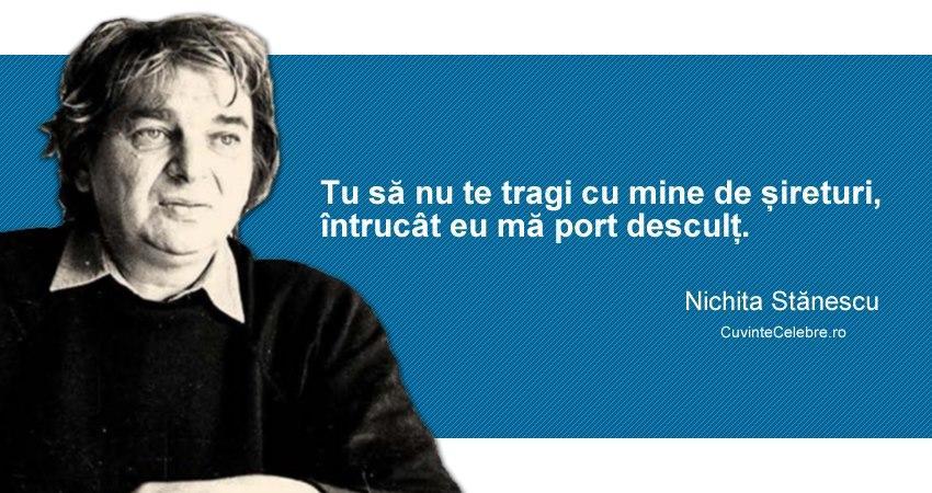 Nichita