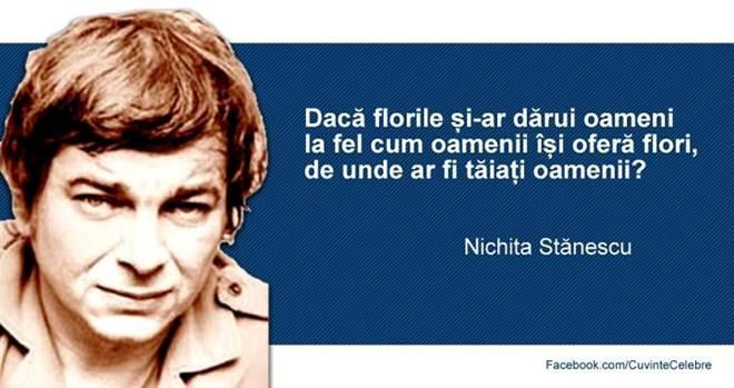 Nichita2