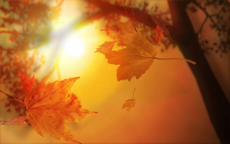 soare de tomna