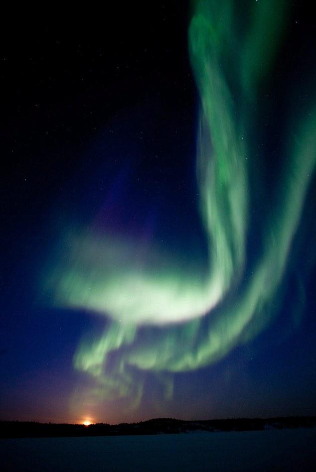 The aurora australis lights