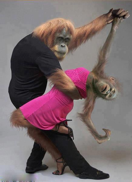 dancem