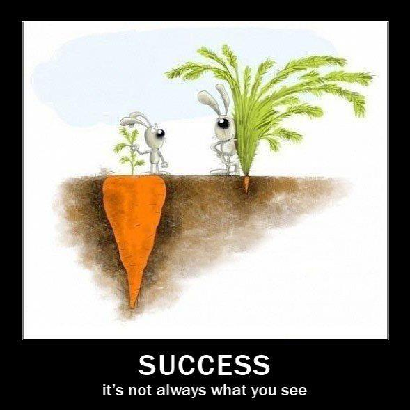 Succes is not always what you see