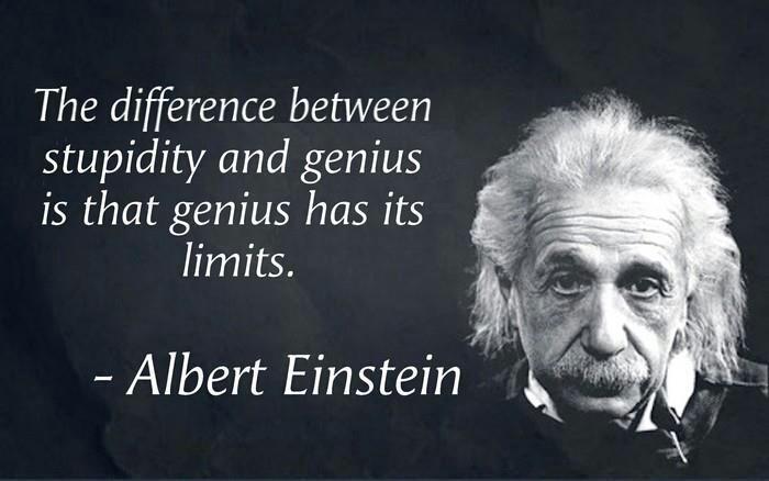 Genius and Stupidity