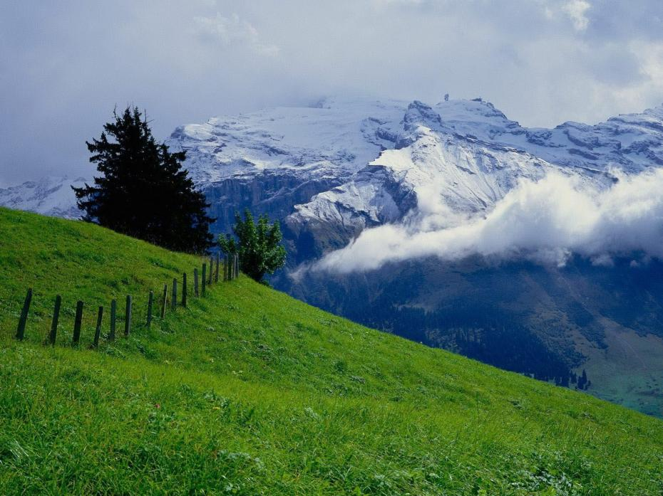 Munti In Austria