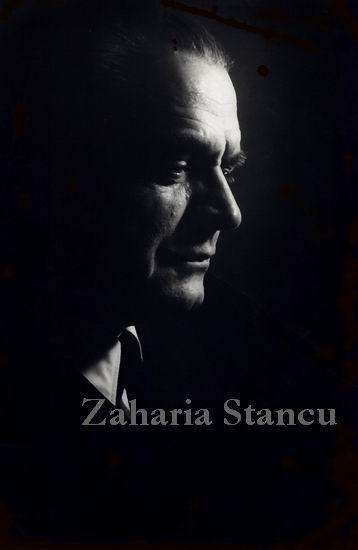 PortretZahariaStancu-M