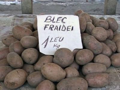 blec-fraidei-400x300