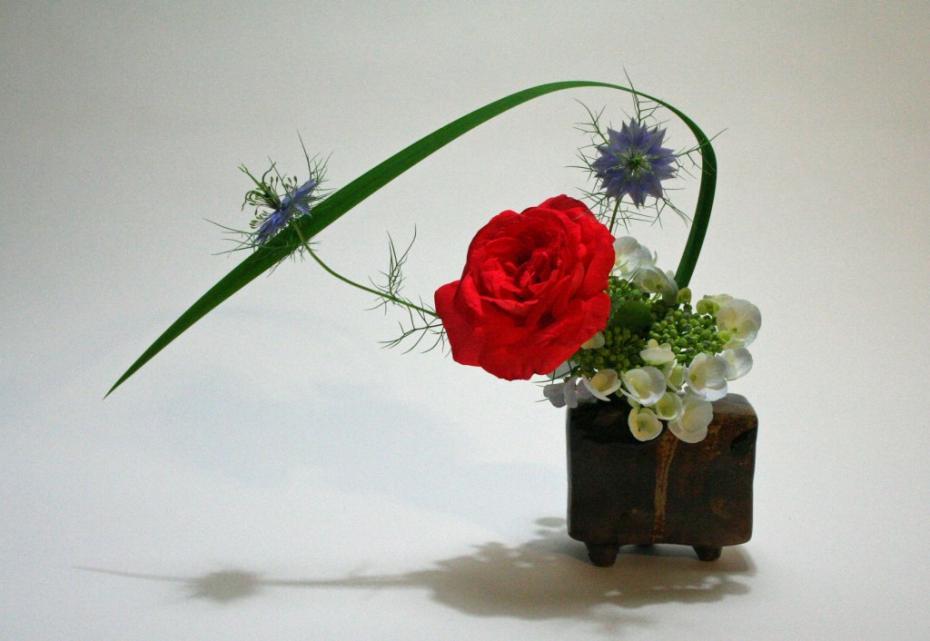 rose-and-iris-leaf